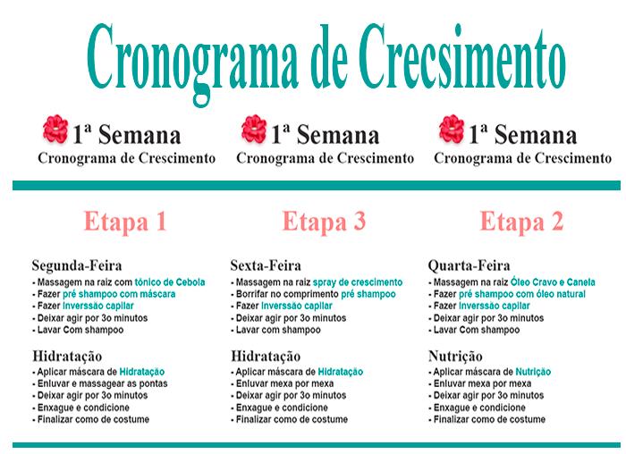 1CRONOGRAMA